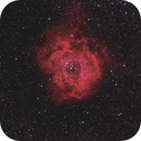 NGC 2244 (Ha+RGB),                                Scott Davis