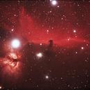 Horse Head Nebula,                                Mohammad Rahimi