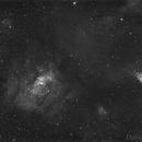 NGC7635 Bubble Nebula,                                David Wills (PixelSkies)