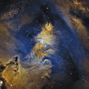 Christmas Tree Cluster, NGC2264,                                rallyho