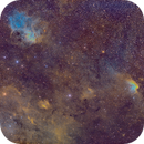 The Lion and the Wizard - Cepheus Wide Field in SHO,                                Cfosterstars