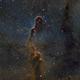 IC1396 - Vdb 142 Elephant Trunk,                                Fernando Huet