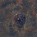 Rosette Nebula,                                Cesar