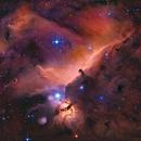Horse head nebula,                                Martin Williams