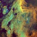 IC5070 Pelican Nebula,                                Wilsmaboy