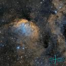 Sh2-101 - The Tulip Nebula,                                José Fco. del Agu...