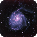 Messier 101 in LRGB with Ha blended in PS,                                David Redwine