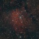NGC 6820  and 6823,                                Joseph Buchanan