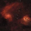 Flaming Star and Tadpole Nebulae,                                Mike Brady