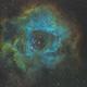 NGC 2237 - Rosette Nebula,                                Meshal Almutairi