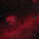 IC 2177 (Seagull Nebula),                                Klaus Haevecker