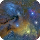 Rho Ophiuchi Complex,                                davidaharvey