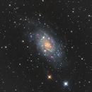 NGC 2403,                                Mike Kline