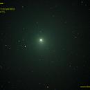 Comet 46P Wirtanen GIF,                                Carlos Alberto Pa...