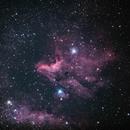 IC5070-Pelikannebel,                                nikoman