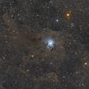 The Iris Nebula,                                Nicholas Di Bari