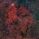 µ Cephei (Erakis) - IC 1396 - Elephant Trunk nebula,                                gigiastro