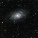 M33 Galassia Girandola,                                Alessandro Speranza