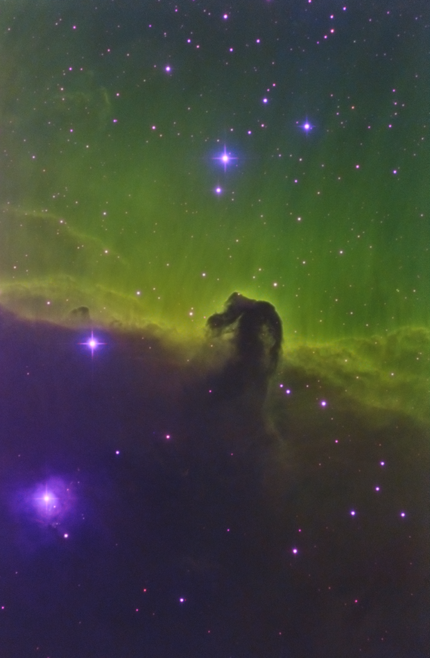 SHO Horsehead Nebula,                                Richard Muhlack