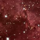 Star formation region in the Rosette Nebula,                                stevebryson