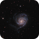 M101 Pinwheel Galaxy,                                Terri