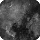 North American and Pelican Nebulae (Ha Only),                                Alex Roberts