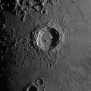 Copernicus,                                Nick Smith