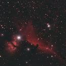 Horsehead Nebula,                                Samuel Müller