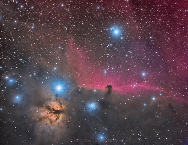 NGC 2024 IC 434 HORSE HEAD NEBULA FLAME NEBULA ,                                Maicon Germiniani