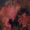 North America and Pelican Nebula,                                Michael S.