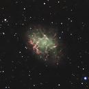 Crab Nebula,                                Miles Zhou