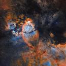 Fish Head Nebula (IC 1795) in SHO Hubble Palette with RGB Stars,                                Johnny Qiu