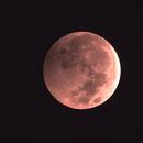 Lunar Eclipse 1/20/2019 22:02 MST,                                Steve Lantz