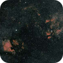 Les nébuleuses du Cygne,                                Nicolas JAUME