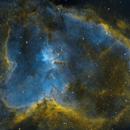 IC 1805 Heart Nebula,                                Tyler McMahon