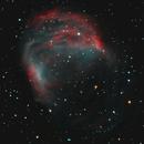 Abell 21 Medusa Nebula,                                Jerry Macon