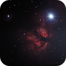 The Flame Nebula,                                Don Curry