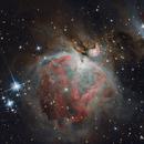 M42 - Orion Nebula,                                Matteo Ambrosi
