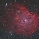 NGC2174 - The Monkey Head Nebula,                                Jeroen Moonen