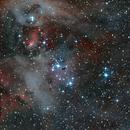 IC 2944,                                Mark