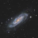 NGC 3198 in Ursa Major,                                Steve Milne
