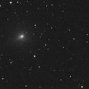 Comet C/2019 Y4 (ATLAS) Animation,                                Marcel Nowaczyk