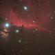 IC434 mit Pferdekopfnebel (B33),                                Michael Schröder