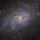 Messier 33 Explore Scientific ED127 FCD100,                                Steve Siedentop