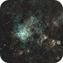 Tarantula Nebula NGC2070,                                KiwiAstro