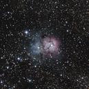 M20 - Trifid Nebula,                                Jon M. Sales