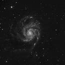 Modest M101,                                Ivaylo Stoynov