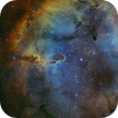 IC1396 SHO,                                Greg Rodriguez