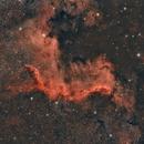 NGC 7000,                                Leo