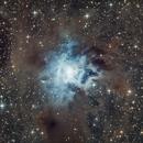 Iris Nebula,                                llolson1
